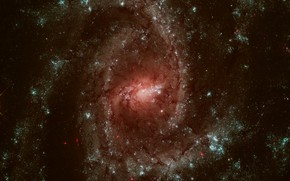 Picture substance, spiral galaxy, перемычка, многорукавная, NGC 2835