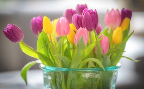 Picture bouquet, tulips, vase, pink