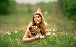 Picture girl, glade, woman, dog, dandelions