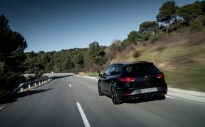 Picture black, rear view, universal, Seat, 2019, Leon Cupra R ST