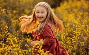Picture field, joy, nature, dress, girl, child, Svetlana Shelemeteva