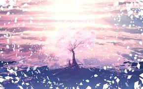 Picture girl, spring, Sakura