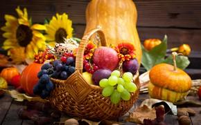 Picture autumn, flowers, basket, apples, grapes, pumpkin, fruit