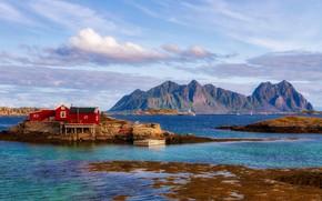 Picture sea, mountains, Norway, Lofoten