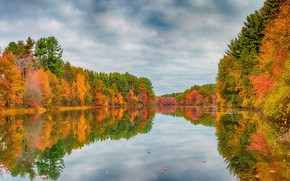 Picture autumn, forest, reflection, pond, the colors of autumn