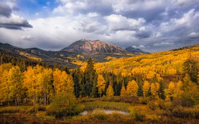 Wallpaper autumn, forest, the sky, clouds, trees, mountains, lake, hills, tops, Golden autumn, yellow foliage