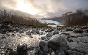 Picture fog, river, stones