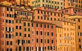 Picture home, Italy, Liguria, Camogli