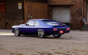 Picture Muscle, Car, Blue, Nova, Pro Touring