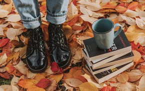 Picture autumn, leaves, girl, feet, books, shoes, Cup