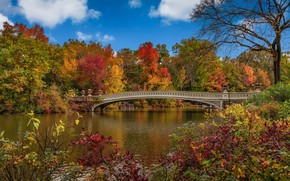 Picture autumn, bridge, New York, USA, Central Park