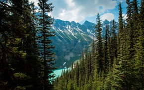 Wallpaper forest, mountains, lake