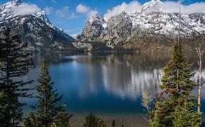 Picture trees, mountains, lake, Wyoming, Wyoming, Grand Teton National Park, Rocky mountains, Rocky Mountains, National Park …