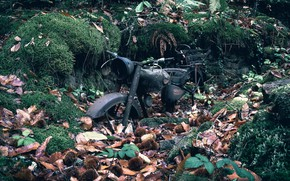 Picture nature, motorcycle, scrap