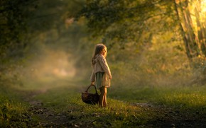 Picture forest, basket, girl