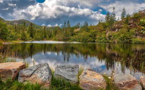 Picture forest, mountains, lake, stones