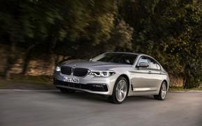 Picture road, trees, grey, movement, BMW, sedan, hybrid, 5, four-door, 2017, 5-series, G30, 530e iPerformance