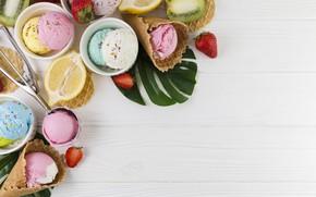 Picture berries, ice cream, citrus