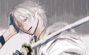Picture language, guy, Touken Ranbu, Dance Of Swords