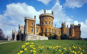 Picture flowers, castle, England, spring, England, Leicestershire, Belvoir castle