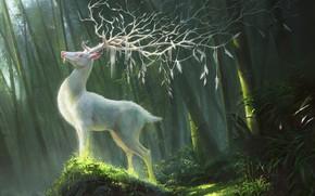 Picture fantasy, forest, horns, animal, digital art, artwork, branches, fantasy art, creature, illustration, Deer, white deer