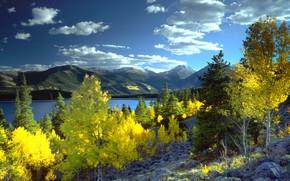 Picture autumn, trees, landscape, mountains, nature, lake, Colorado, USA, Aspen