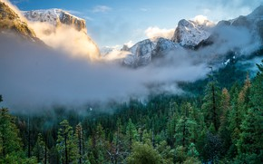 Picture Nature, Clouds, Mountains, Fog, Snow, Forest, Landscape