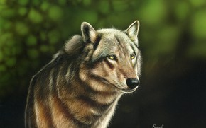 Picture wolf, blurred background, by shonechacko