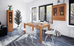 Picture room, interior, light, dining room