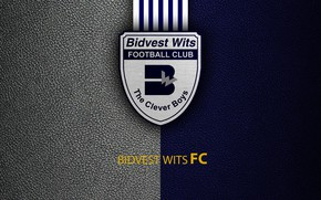 Picture wallpaper, sport, logo, football, Bidvest Wits