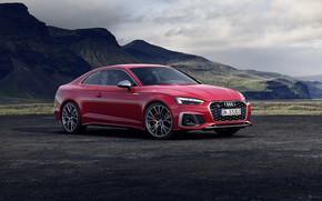 Picture Audi, TDI, Coupe, Audi S5, 2020