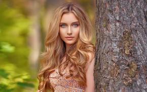 Picture look, girl, nature, model, hair, rose, beauty, Alexandra Lenarchyk