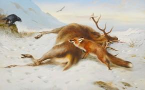Picture Winter, Raven, Fox, Picture, Deer, Archibald Thorburn, Archibald Thorburn,, Is not for pantry, Шотландский живописец