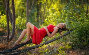 Picture trees, nature, loneliness, stay, trees, nature, Sunny day, big Breasts, solitude, sunny day, the girl …