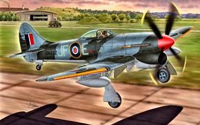 Picture Tempest, Hawker Tempest Mk.V, external fuel tank, Engine Napier Sabre II, 4x20 mm Hispano gun …