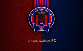 Picture wallpaper, sport, logo, football, Davao Aguilas
