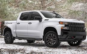 Picture machine, forest, Chevrolet, white, pickup, winter, wheel, snow, Chevrolet Silverado, Z71, the white car, big …
