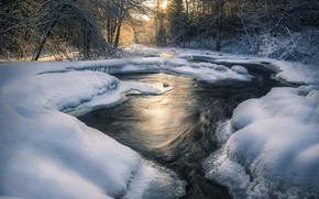 Picture winter, forest, snow, trees, landscape, nature, river