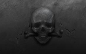 Picture metal, cracked, skull, bone, black background