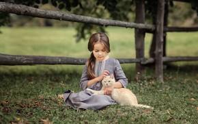 Picture cat, summer, cat, nature, animal, dress, girl, child, Victoria Dubrovskaya