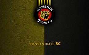 Picture wallpaper, sport, logo, baseball, Hanshin Tigers