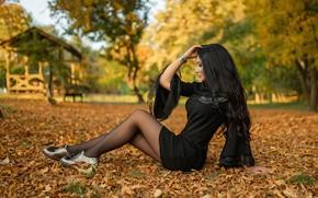 Picture autumn, leaves, pose, hair, Girl, dress, brunette, legs, A Diakov George