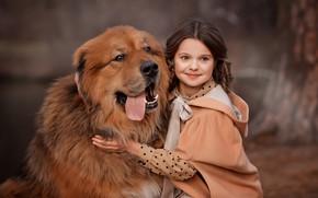 Picture portrait, dog, girl, friends, dog, Tibetan Mastiff, Valentine Ermilova