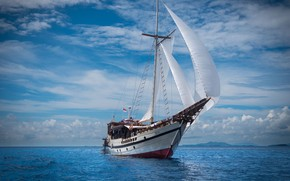 Picture sea, ship, sailboat, sails, sailing ship, liveaboard-50, Wisesa