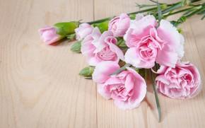 Picture flowers, bouquet, petals, pink, wood, pink, flowers, beautiful, romantic