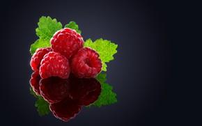 Picture macro, berries, raspberry, background, black