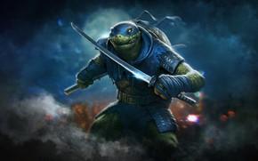 Picture Style, Sword, Background, Fantasy, Swords, Teenage mutant ninja turtles, Art, Style, Fiction, TMNT, Leonardo, Leonardo, …