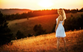 Picture field, look, girl, sunset, nature, pose, model, figure, dress, legs, beauty