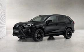 Picture Toyota, Hybrid, Black Edition, RAV4