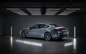 Picture reflection, lamp, coupe, BMW, the ceiling, Gran Coupe, 8-Series, 2019, the four-door coupe, Eight, G16